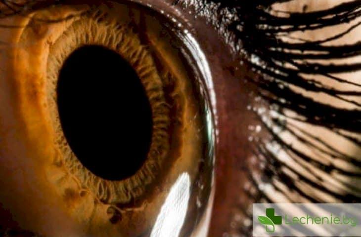 Ирисова диагностика - разпознаване на болестите по очите