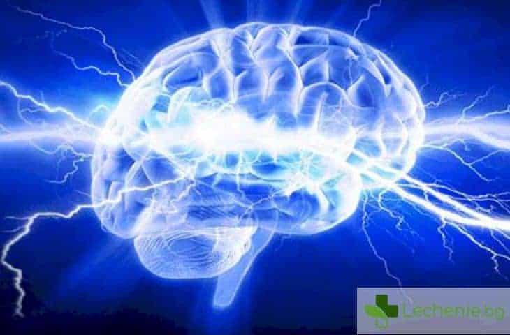 Как изучаването на чужди езици изменя мозъчната функция?