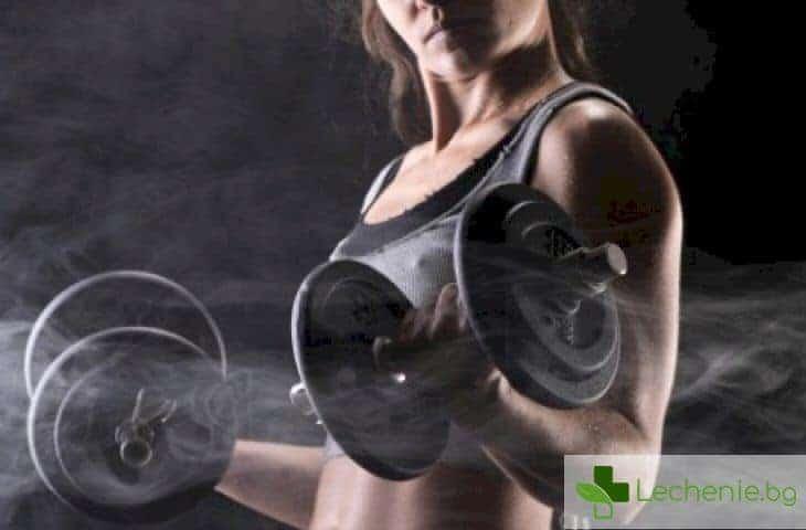 Каква тренировка да изберете - кардио или силова
