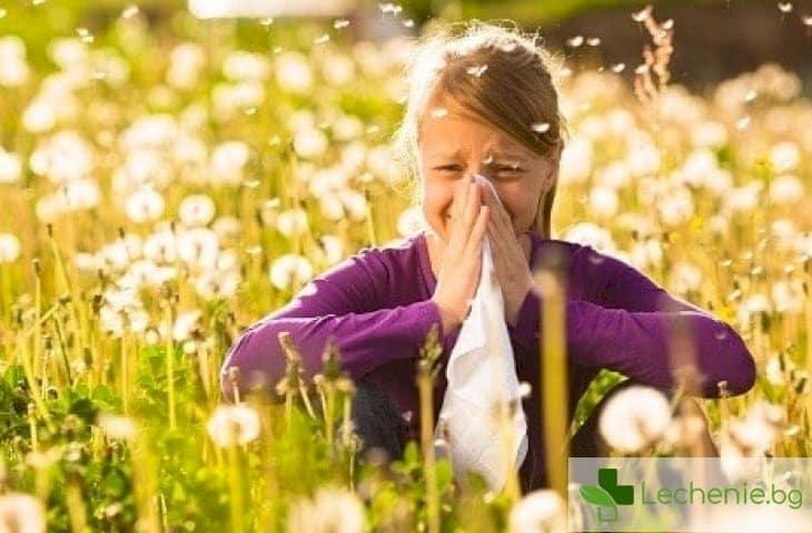 Лятна алергия
