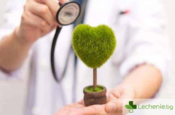 Топ 4 характерни за месец май болести и здравни рискове