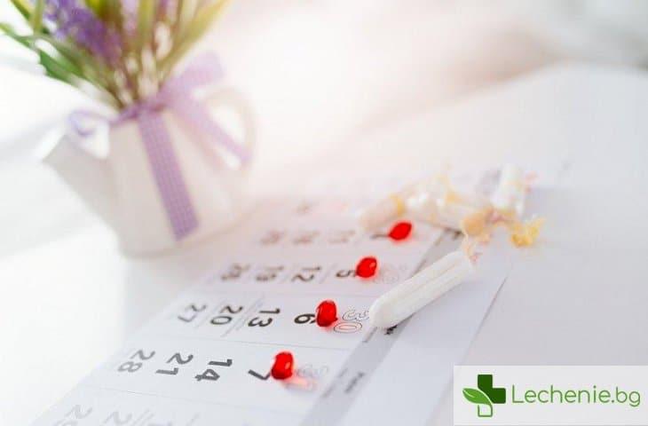 Менструация след раждане - какво да очакваме