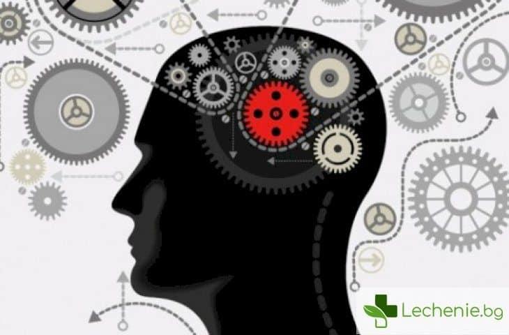 Силата на мисълта - как да подобрим качеството на живота си, само чрез съзнанието си