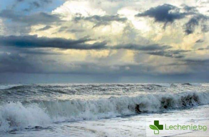 Какви са изключителните ползи за здравето от къпането в морето
