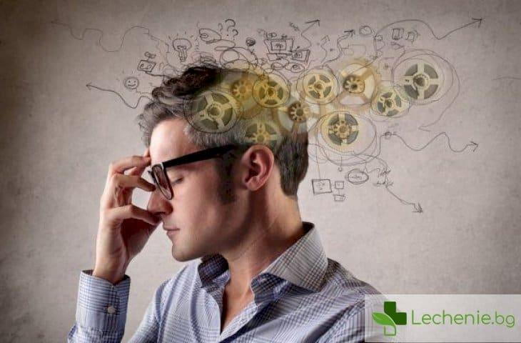 """Как да помогнем на мозъка да """"работи"""" по-ефективно"""