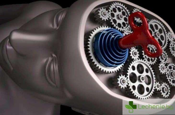 Какво всъщност правите с мозъка си?