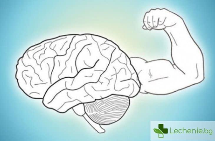 20 начина как да разгърнете потенциала на вашия мозък