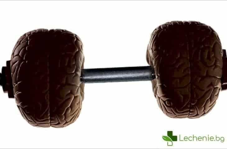 Фитнес за ума - 14 полезни упражнения за мозъка