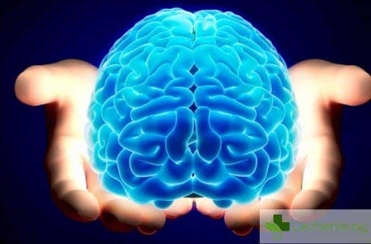 Какви са тайните възможности на човешкия мозък