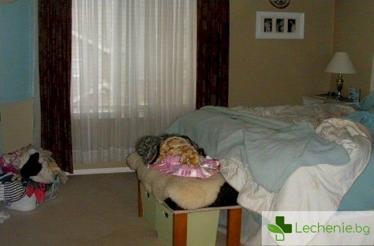 Мръсната спалня - основната причина за епидемията от алергични заболявания?
