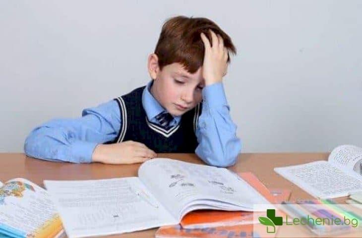 Повишено натоварване в училище - как и с какво да помогнете на детето