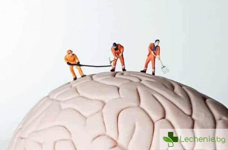 С какво да глезим и от какво да пазим своите нерви