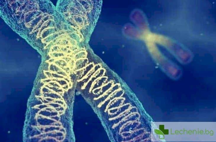 Онкоцитом на бъбреците - причини и лечение