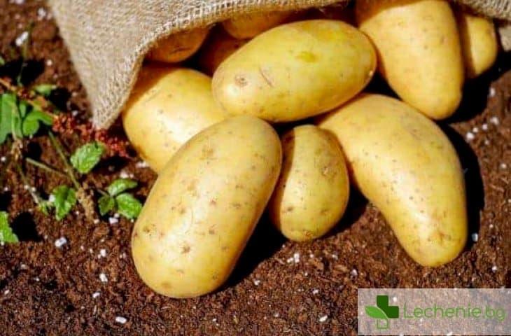 Отравяне с картофи - соланин