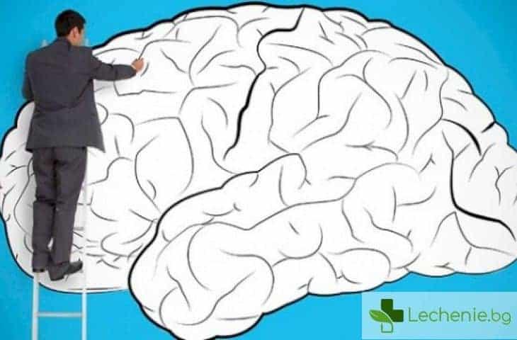 Как да накараме краткотрайната памет да заработи на пълна мощност - топ 4 съвета