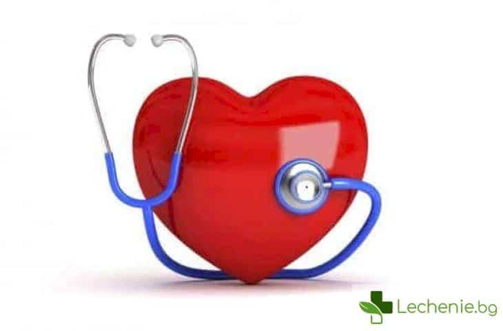 Български учени откриха нов параметър за прогнозиране на риска от сърдечно-съдови заболявания