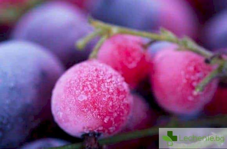 Има ли изобщо витамини във вносните плодове през зимата