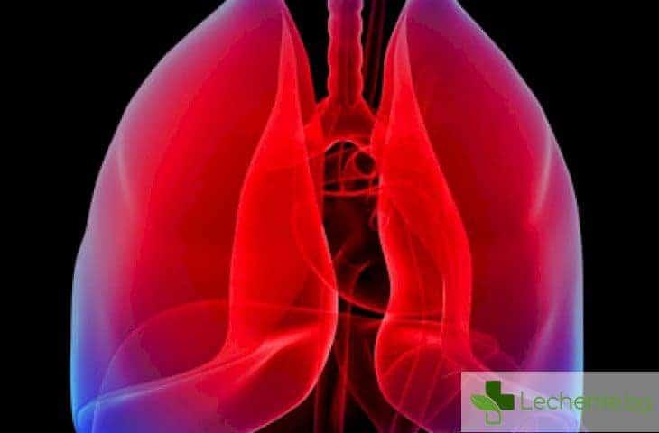 Двустранна бронхопневмония - топ 5 причини и лечение