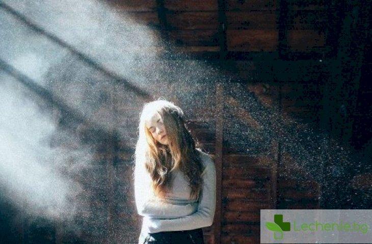 5 удара, които домашният прах нанася на здравето