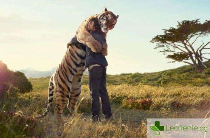 Защо прегръдките са невероятно полезни за здравето