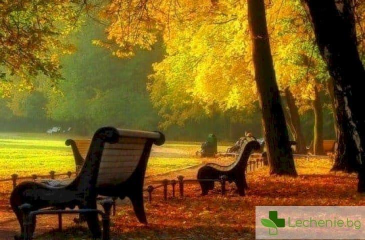 Топ 5 есенни проблема и как да се справите с тях