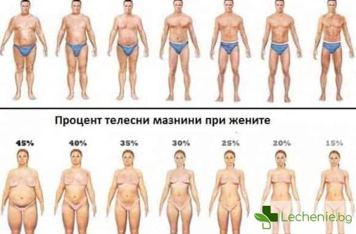 Процент телесни мазнини - защо е толкова важен и как се определя