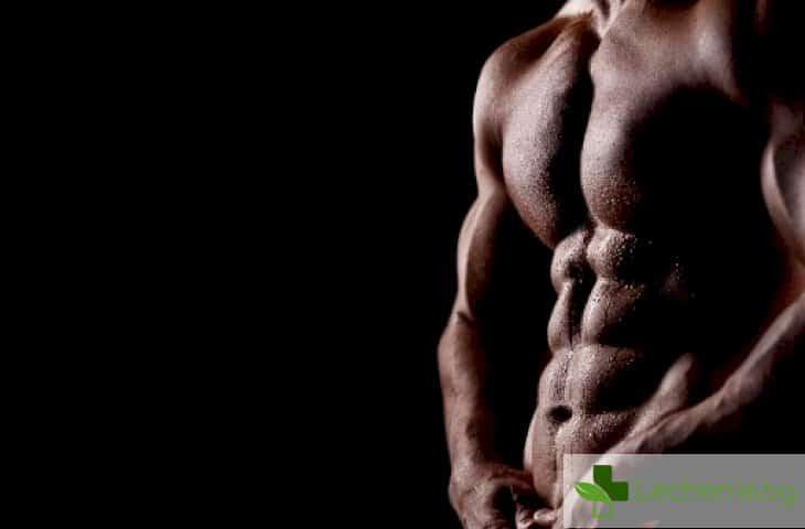 Обрязването след 35-годишна възраст предотвратява рак на простатата?