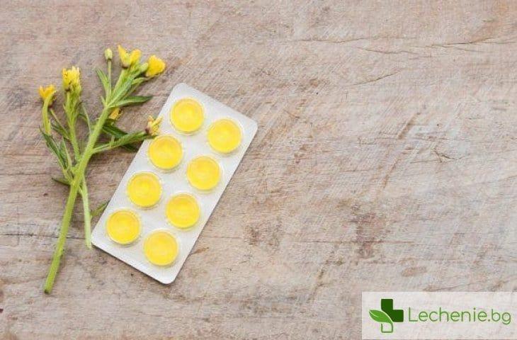 Растителни екстракти при възпаление и болки в гърлото - кога са най-ефективни