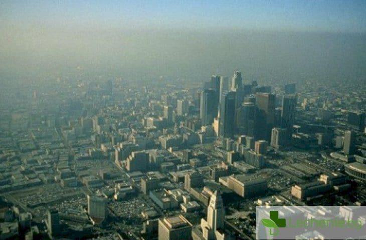 Ето как мръсният въздух радикално променя гените ни