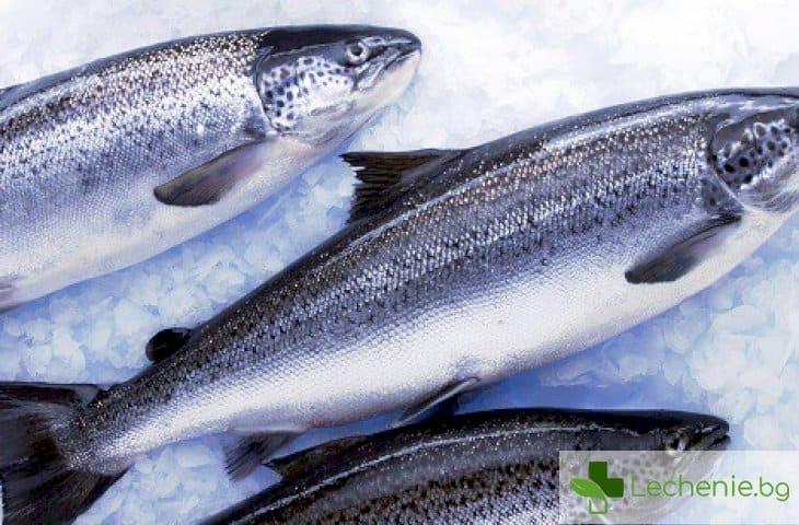 Как безопасно да приготвяте сладководна риба