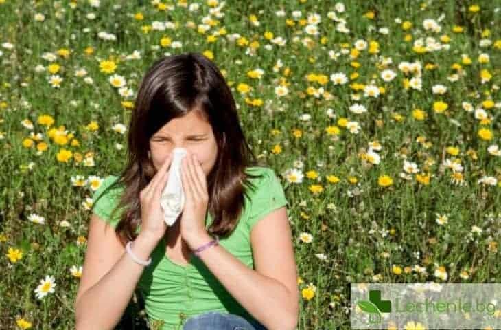 Целогодишен алергичен ринит