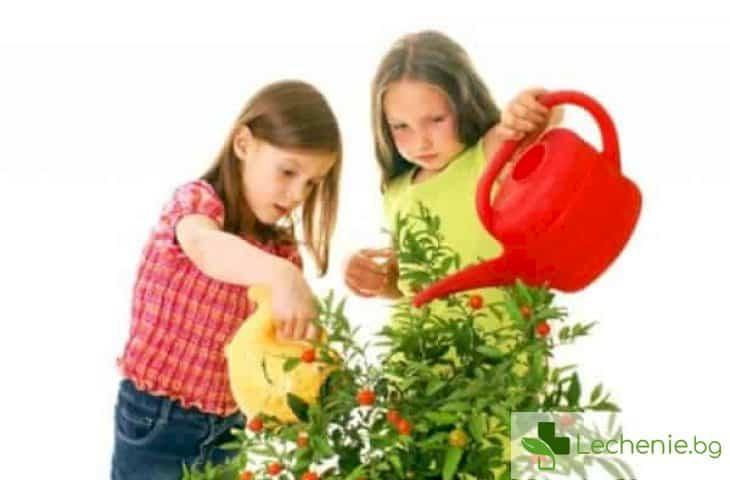 Как да научите детето си на самостоятелност