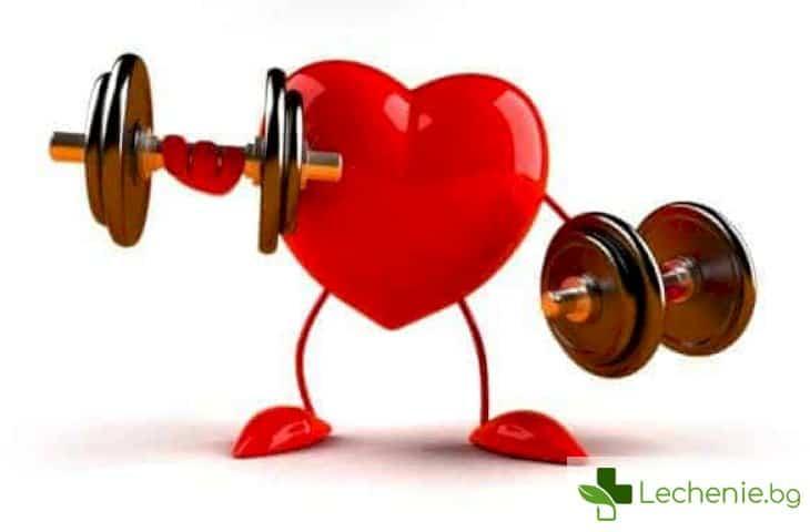 10 навика, които силно ускоряват стареенето на сърцето
