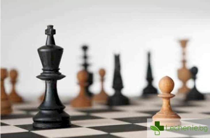 Какви са предимствата да притежаваш мозък на шахматист