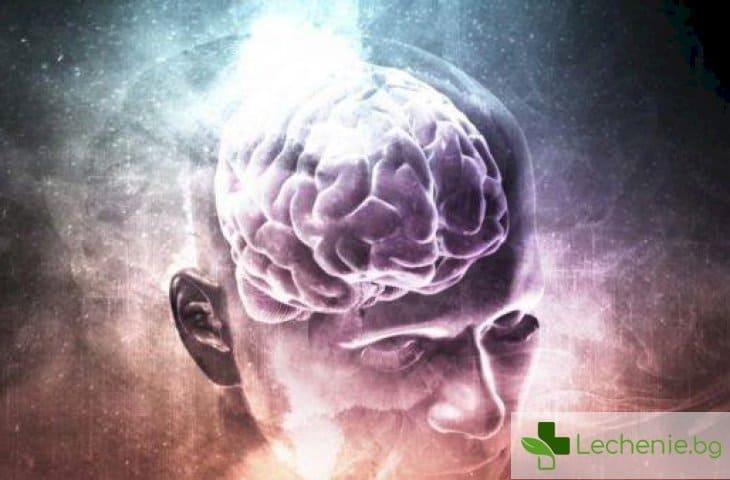 Стареене на главния мозък - заблуди и реалност