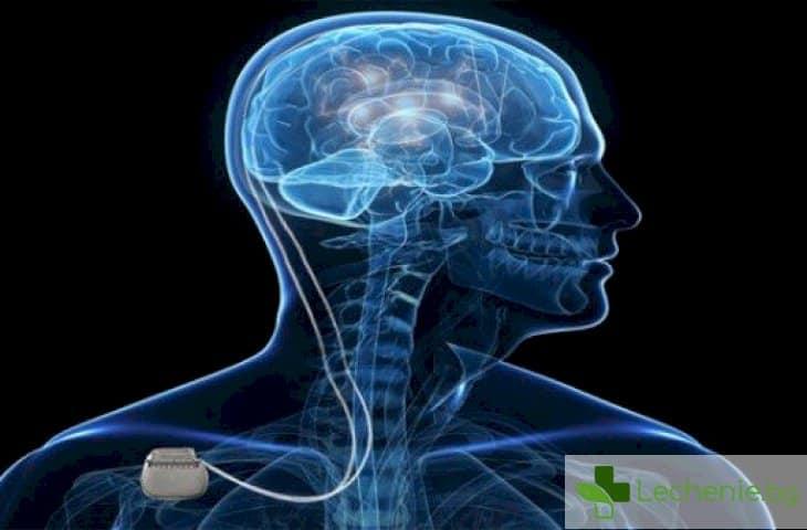 Дълбока мозъчна стимулация забавя оглупяването при Алцхаймер