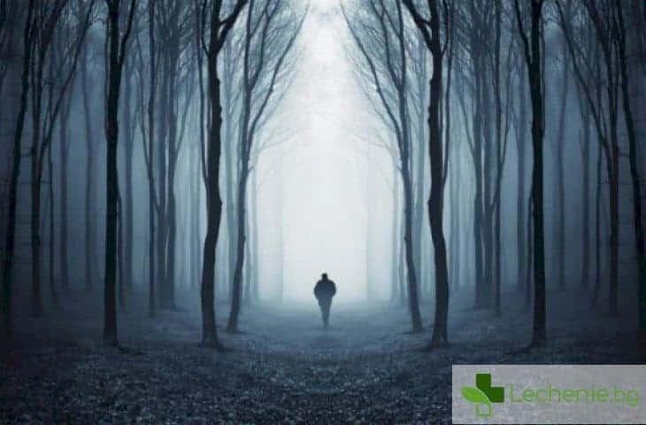 Топ 5 на най-големите страхове на съвременния човек