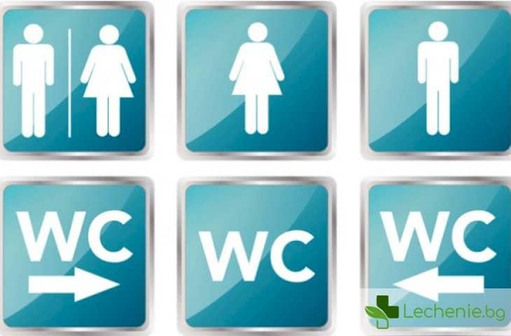 Топ 3 правила за правилно използване на обществени тоалетни