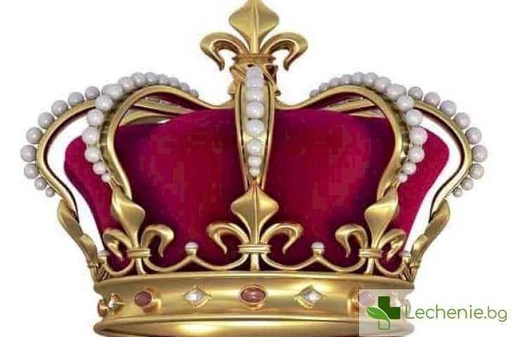 Царски заболявания - от какви болести са страдали монарсите