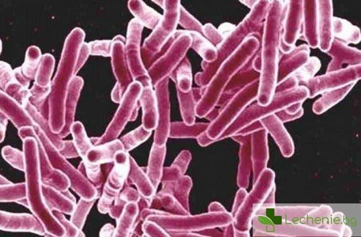 Туберкулозен плеврит