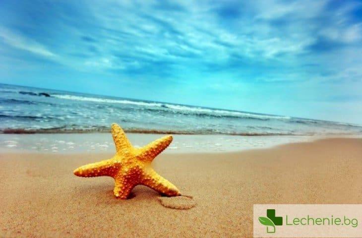 Какво може да ви ухапе на плажа и какво да правите, ако това се случи