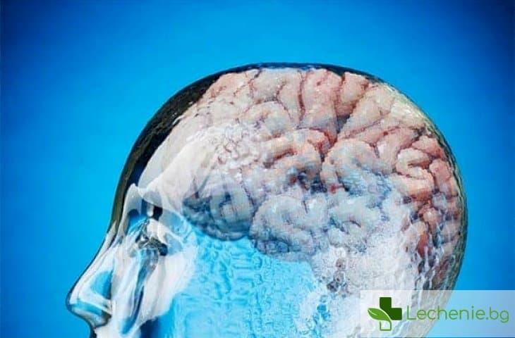 Как да повишите най-лесно коефициента си на интелигентност