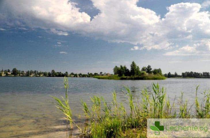 Какви опасни за здравето микроорганизми обитават откритите водоеми