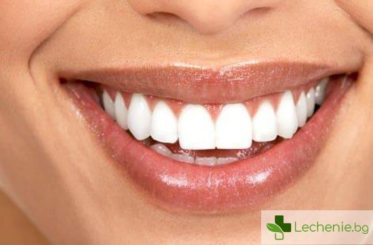 Учени допускат, че регенерацията на зъбите в зряла възраст е възможна