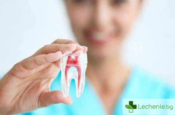 Всички болести са от зъбите - топ 3 причини да отидем на зъболекар