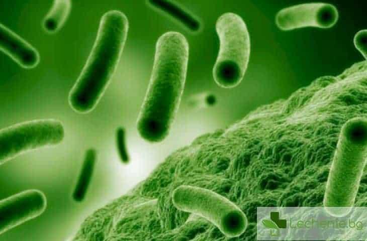 Само мит ли е заразяването с полово предавани болести от тоалетна чиния