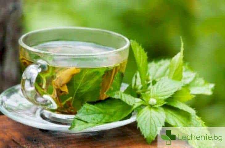 Съставка в зеления чай лекува синдрома на Даун
