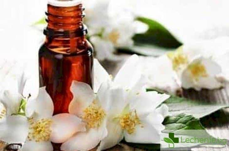 Топ 6 полезни за здравето свойства на жасминовото масло
