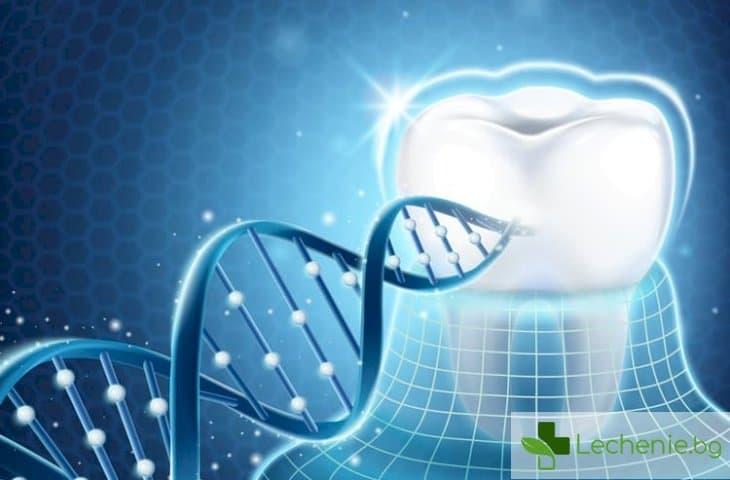 Лекуват зъбите по напълно нов начин - въздействат на ниво гени