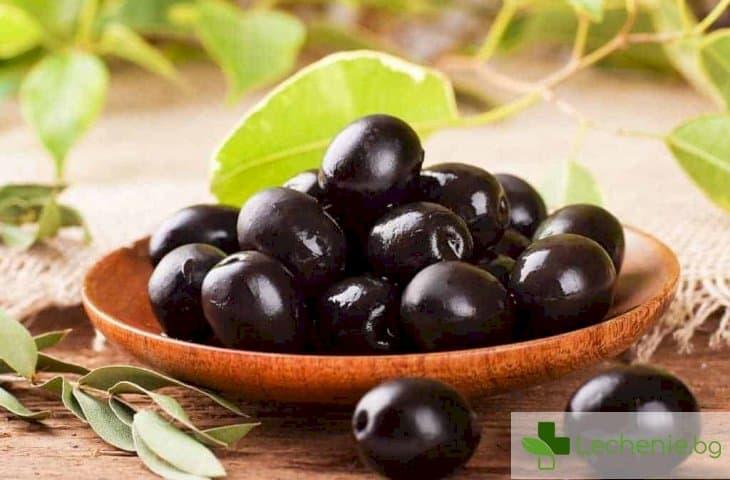 Полезните свойства на маслините